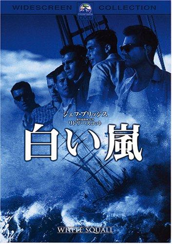 白い嵐 [DVD]の詳細を見る