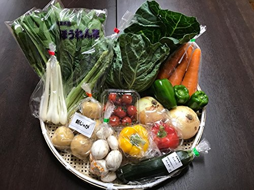 野菜セット 千葉・茨城県 農家さん直送野菜 新鮮採れたて 10品目以上 れんこん さつまいも