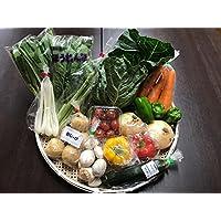 野菜セット 千葉・茨城県 農家さん直送野菜 新鮮採れたて! 送料無料(クール便代込)