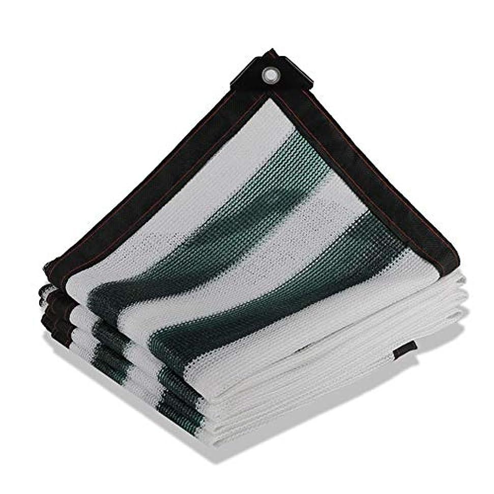 肺顧問不名誉CHAOXIANG オーニング シェード遮光ネッ 暗号化 アンチサン 遮光カバー パティオ バルコニー カバーライト 断熱ネット マルチサイズ、 カスタマイズ可能 (色 : A, サイズ さいず : 4x20m)