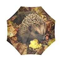 Funny Hedgehog折りたたみ雨傘パラソル太陽傘防風旅行コンパクト