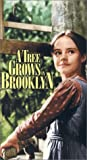 Tree Grows in Brooklyn [VHS] [Import]
