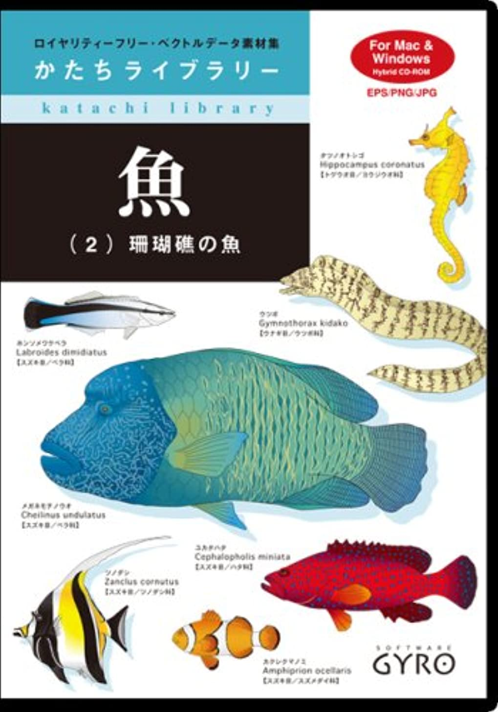 周りメディカル戸棚かたちライブラリー 魚2