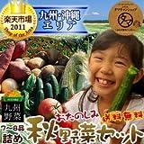 九州野菜ミニミニお試しセット