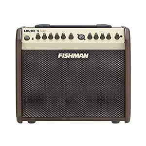 FISHMAN Acoustic Amplifiers Loudbox Mini, 100V ラウド・ボックス ミニ (60W)