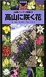 高山に咲く花 (山渓ハンディ図鑑)