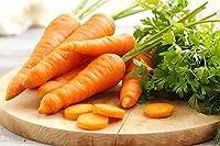 """Zanahoria""""Aron F1"""" - variedad temprana - semilla"""