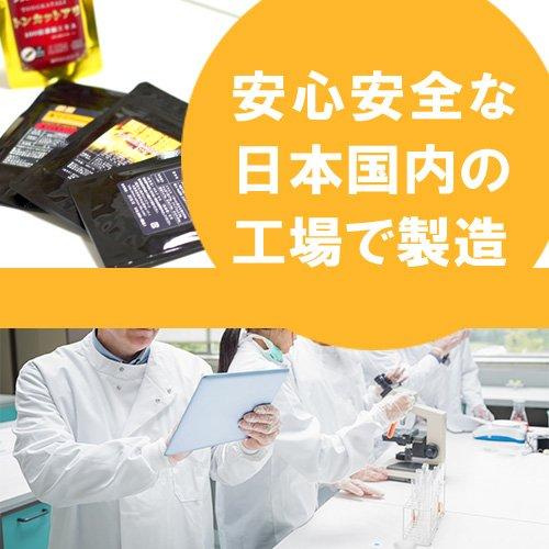 【2袋セット】メンズサプリ 絶倫有機マカ+純度100%L-シトルリン+トンカットアリ100倍濃縮&精力成分20種以上配合