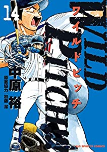 WILD PITCH!!!(14) (ビッグコミックス)