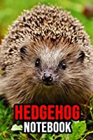 """Hedgehog Notebook: Lovely Journal / Notepad / Diary, Gifts For Hedgehog Lovers (Lined, 6"""" x 9"""")"""