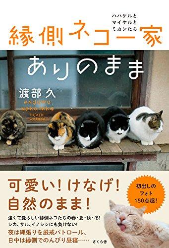縁側ネコ一家 ありのまま ―ハハケルとマイケルとミカンたちの詳細を見る