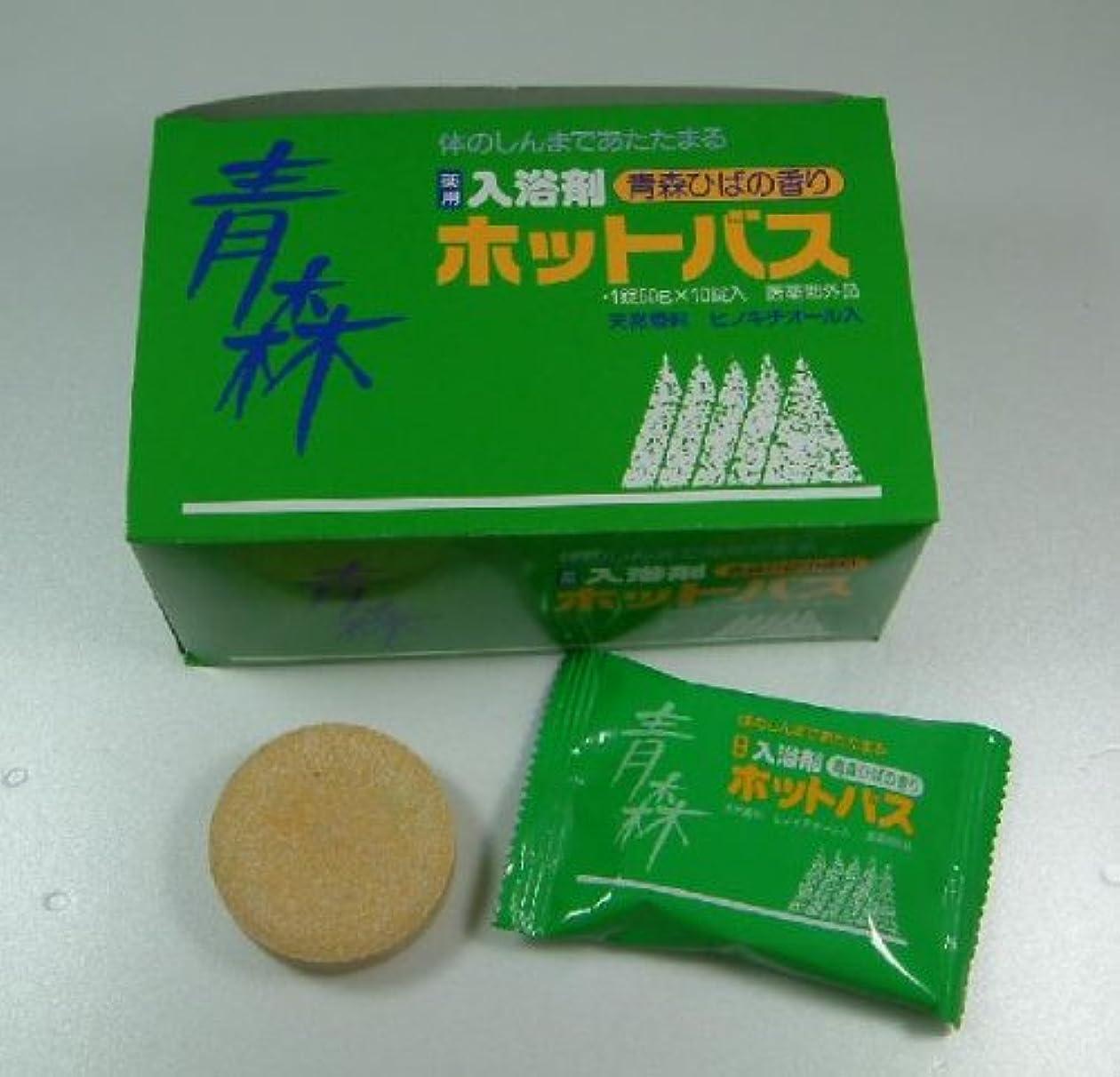 事故写真を描くタイト青森ひば薬用入浴剤 ホットバス 10錠
