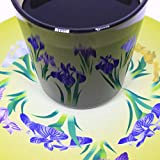 遊生活・竜玉堂 グラスに花咲く イリュージョンコースター燕子花(かきつばた)・グラスセット プレゼント 布製