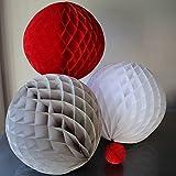 SUNBEAUTY 「6個セット」20cm+25cm ペーパーハニカムボール組み 合わせ 誕生日 結婚式 ウェディング 飾り付け (白赤グレー)