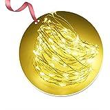 iitrust LED ジュエリーライト LEDイルミネーションライト 乾電池式 防水型 室内外兼用 3メートル 30 LED電球 電池式 LED ライト 四色選択可能 装飾 結婚式 パーティー 飾り ライト 正月 クリスマス 飾り バレンタインデー 電飾 iitrust正規代理品