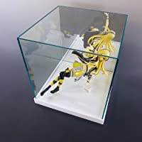 【台座 = 落とし込みタイプ 白 20mm】 ガラス色コレクションケース 背面ミラー W250mm H300mm D250mm