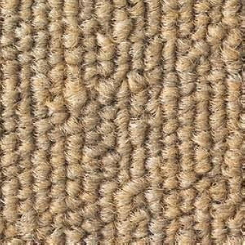 静電性?耐候性?耐薬品性に優れたタイルカーペット サンゲツ NT-350S ベーシックサイズ 50cm×50cm 12枚セット色番 NT-363S 【防炎】 【日本製】