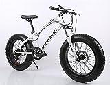 26インチ ファットバイク 自転車 シマノ 変速21速 悪路 雪道 ビーチ 極太タイヤ サイクリング BMX マウンテン バイク (ホワイト)