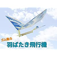AF ゴム動力 飛行機 電池不要で楽しめる!羽ばたき飛行機 組み立てキット / 接着剤・工具不要です 【日本国内より発送】