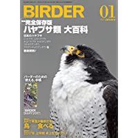 BIRDER(バーダー)2017年1月号 ハヤブサ類【特別付録 BIRDER DIARY 2017】付き