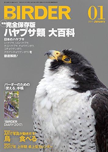 BIRDER(バーダー)2017年1月号 ハヤブサ類【特別付録 BIRDER DIARY 2017】付きの詳細を見る