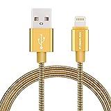 【Apple MFI 認証】Poweradd Lightning ライトニングケーブル アルミスプリングケーブル 高耐久 絡み防止 iPhone X iPhone8 iPhone 8plus iPhone7 6 5 / iPad / iPod 充電 同期ケーブル (ゴールド 1m)