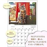 アクティブコーポレーション 2019年 猫 カレンダー 壁掛け 日なたぼっこ猫だより ACL-04 (2019年 1月始まり) 画像