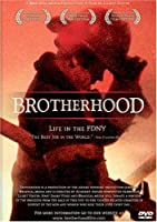 Brotherhood: Life in the Fdny [DVD] [Import]