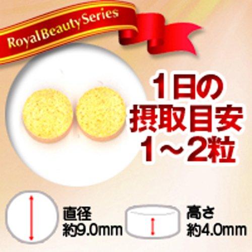 ロイヤルビューティーシリーズ 業務用 コエンザイムQ10 300mg x180粒