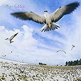 SEYCHELLES(SHM-CD)
