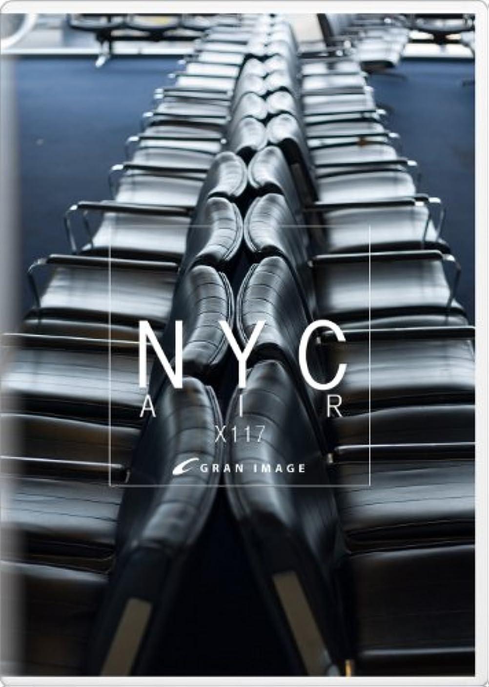 がっかりした通信網ユーモアグランイメージ X117 ニューヨークシティエアー(ロイヤリティフリー写真素材集)