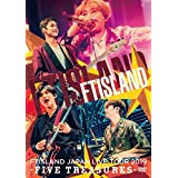 JAPAN LIVE TOUR 2019 -FIVE TREASURES- at WORLD HALL (DVD)