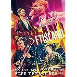 JAPAN LIVE TOUR 2019 -FIVE TREASURES- at WORLD HALL (DVD)