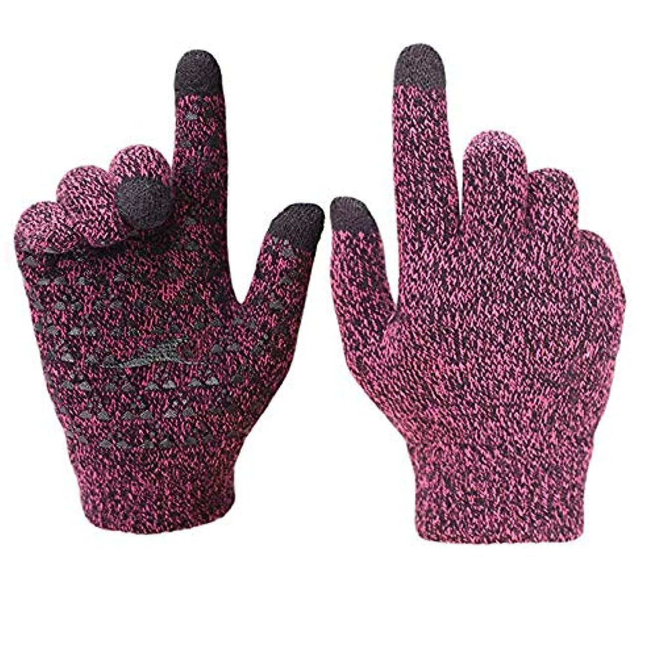 調子緩やかな市の花女性のための冬のニットグローブタッチスクリーン暖かいサーマルソフトライニング弾性カフテキストメッセージ滑り止めの選択