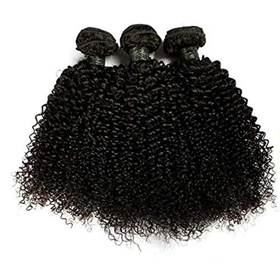 気晴らし検出可能無力WASAIO 髪織りナッピーカーリーバージン人毛エクステンション横糸女性の12のバンドルブラジルレアルリアルな色の「-18」1つのバンドル (色 : 黒, サイズ : 12 inch)