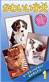 かわいい子犬(1) [VHS]