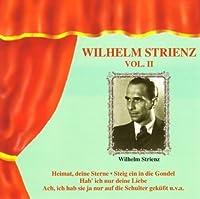 Wilhelm Strienz Vol. II by WILHELM STRIENZ (2013-02-05)