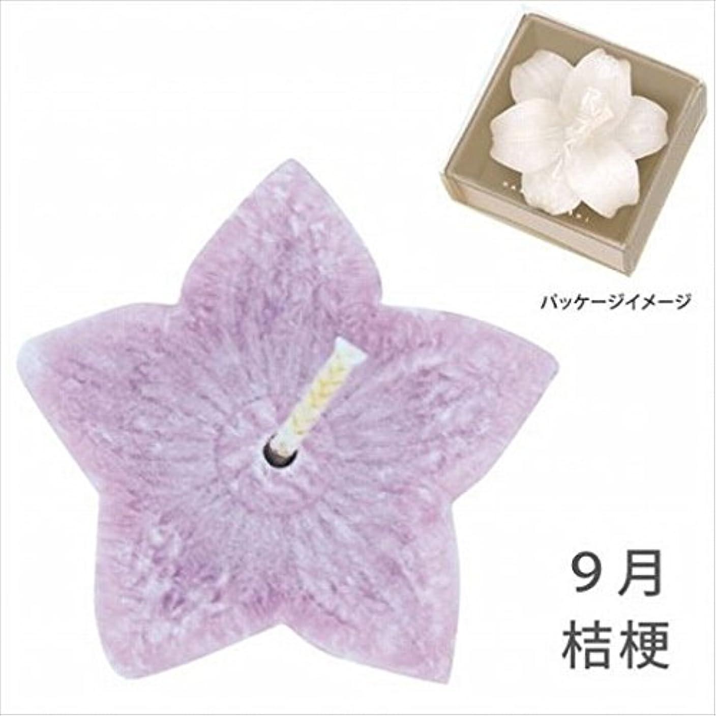 貴重な透けて見える水銀のkameyama candle(カメヤマキャンドル) 花づくし(植物性) 桔梗 「 桔梗(9月) 」 キャンドル(A4620510)
