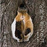 【Amazon.co.jp 限定】必死すぎるネコ ~前後不覚 篇~ オリジナルカバー付き限定版 (タツミムック)