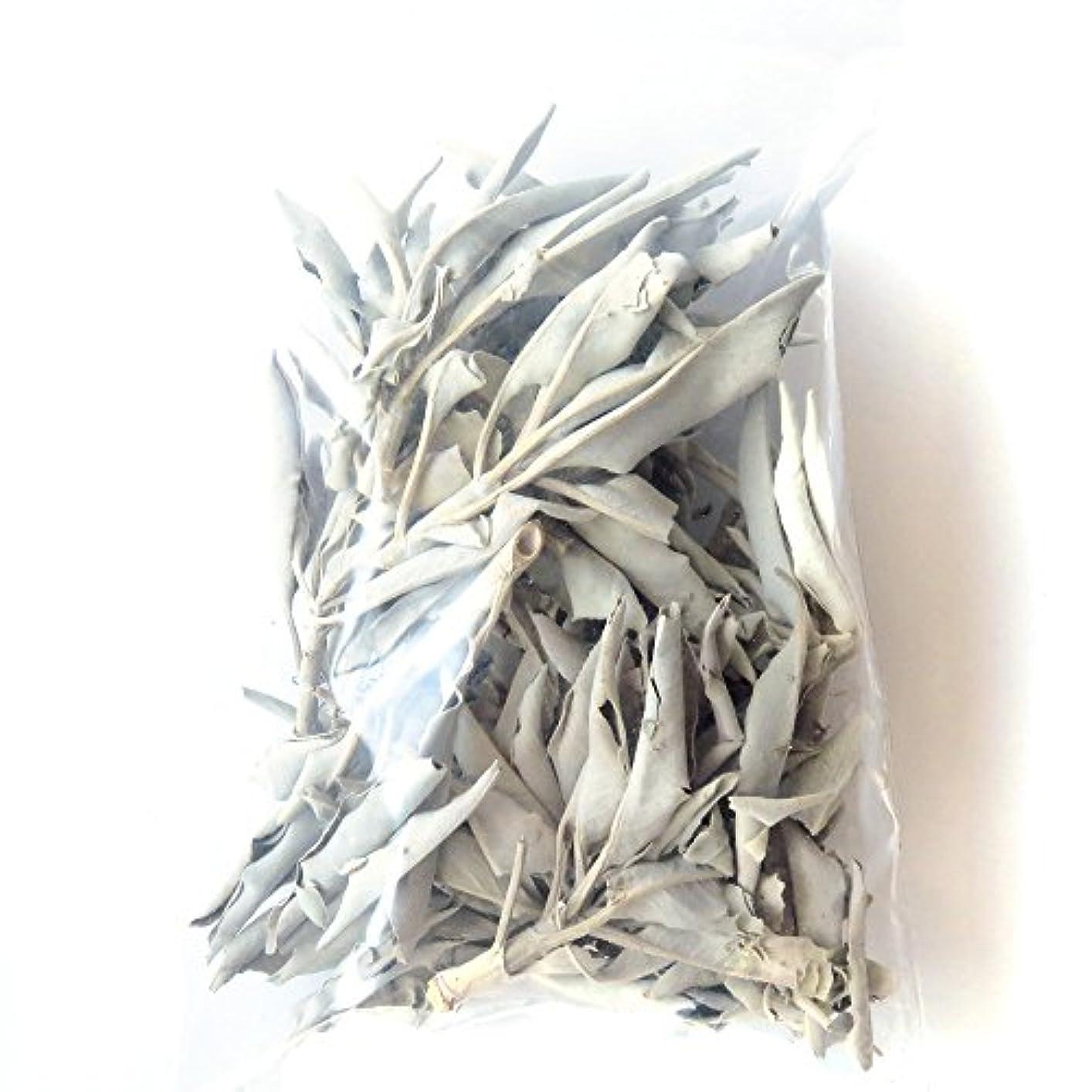 睡眠一部間違っているホワイトセージ 無農薬 カルフォルニア産 30g前後 (枝付き)