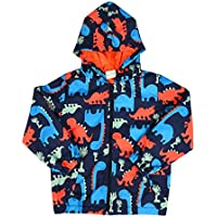 Little Boys Dinosaur Printed Jacket Coat, Cartoon Zipper Hoodies Hooded Jackets, Breathable Mesh Lined Windbreaker For Toddler kids 2-8 Years