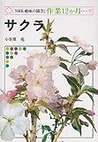 NHK趣味の園芸・作業12か月 19  サクラ