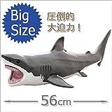 FAVORITE フェバリット 海洋生物フィギュア ビニールモデル プレミアムエディション ホホジロザメ