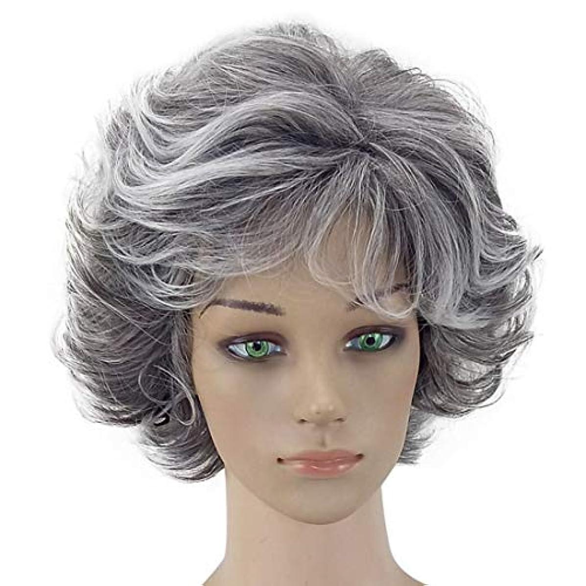 スティック美的レギュラーYOUQIU コスプレ衣装パーティーのためのおばあちゃんグレーアフリカショートアフロカーリーウィッグナチュラル波状のかつらは無料ウィッグキャップウィッグと一緒に来て (色 : Granny Grey, サイズ : ワンサイズ)