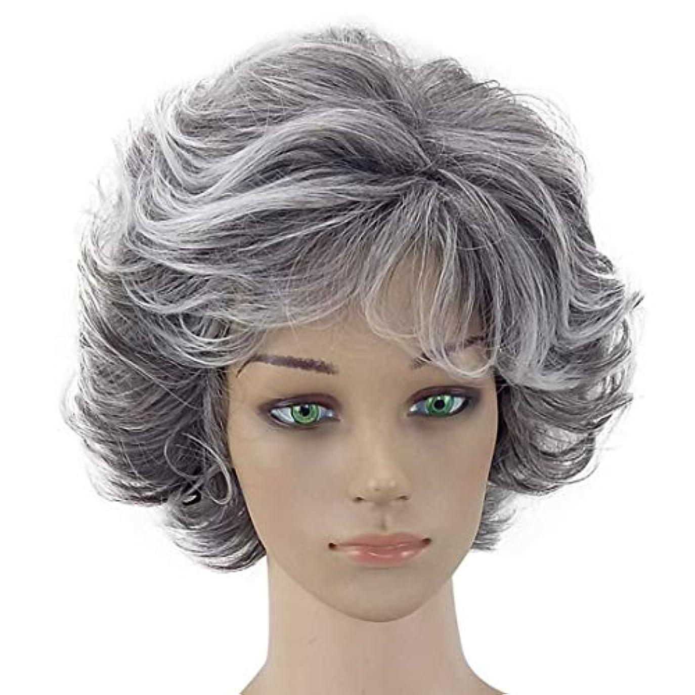 摘む仕事ますますYOUQIU コスプレ衣装パーティーのためのおばあちゃんグレーアフリカショートアフロカーリーウィッグナチュラル波状のかつらは無料ウィッグキャップウィッグと一緒に来て (色 : Granny Grey, サイズ : ワンサイズ)