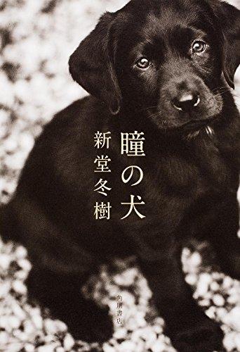 瞳の犬の詳細を見る