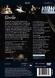 Giselle / [DVD] [Import] 画像