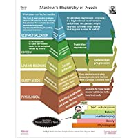 Dbios Maslows Hierarchy Of Needs Digitally Print Higher Education Wall Chart [並行輸入品]