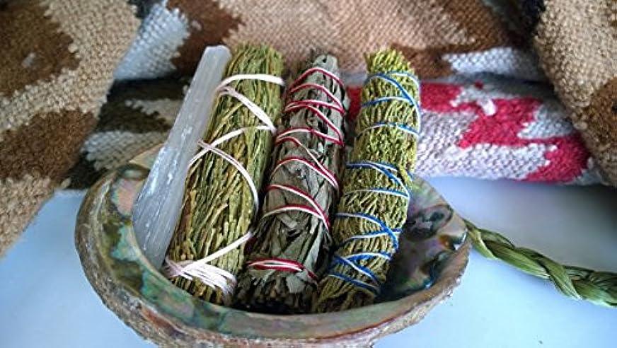 地下鉄直接ブリーフケースEmbrace Variety smudge stick pack