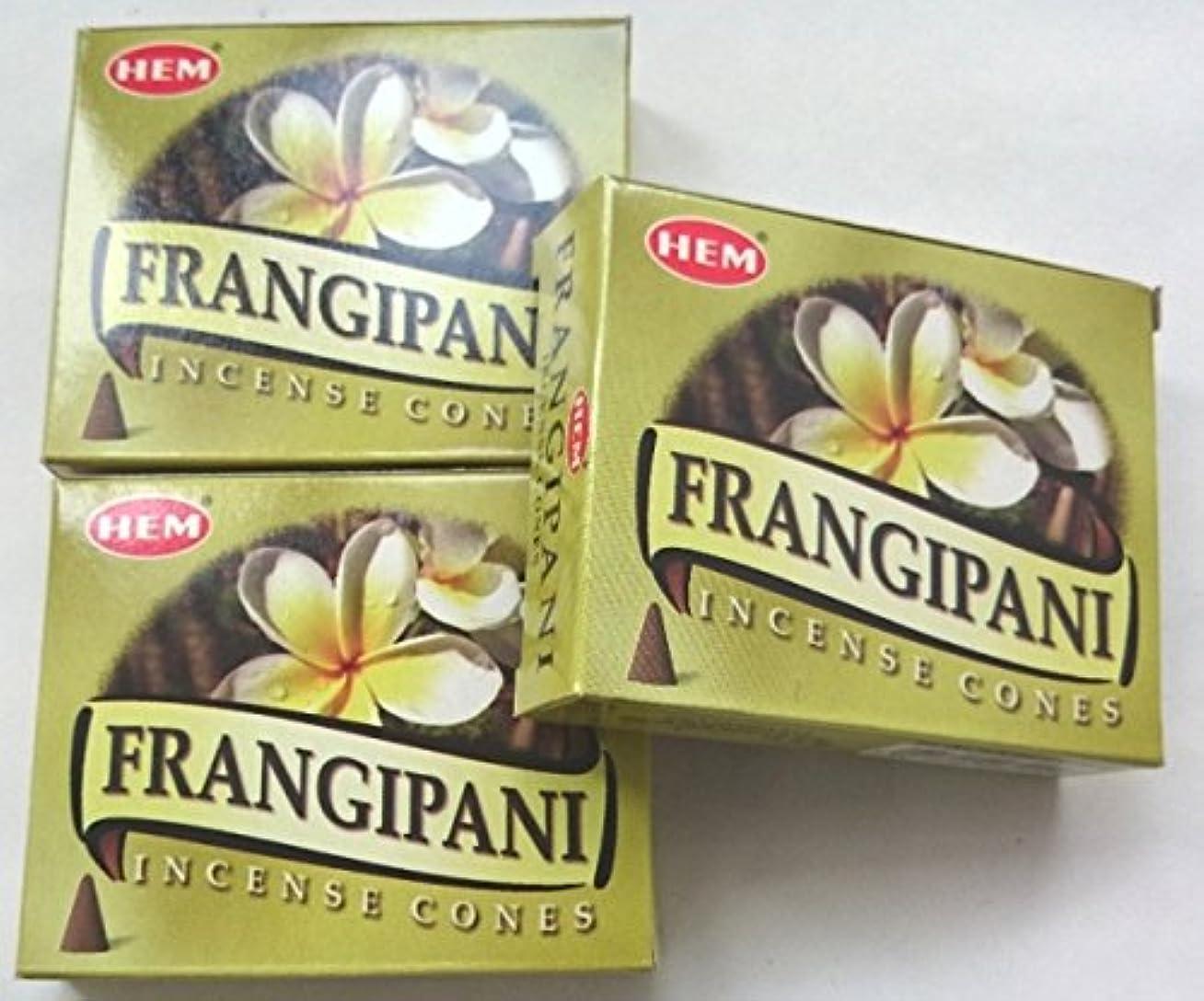 口実浸食組HEM(ヘム)お香 フランジパニ コーン 3個セット